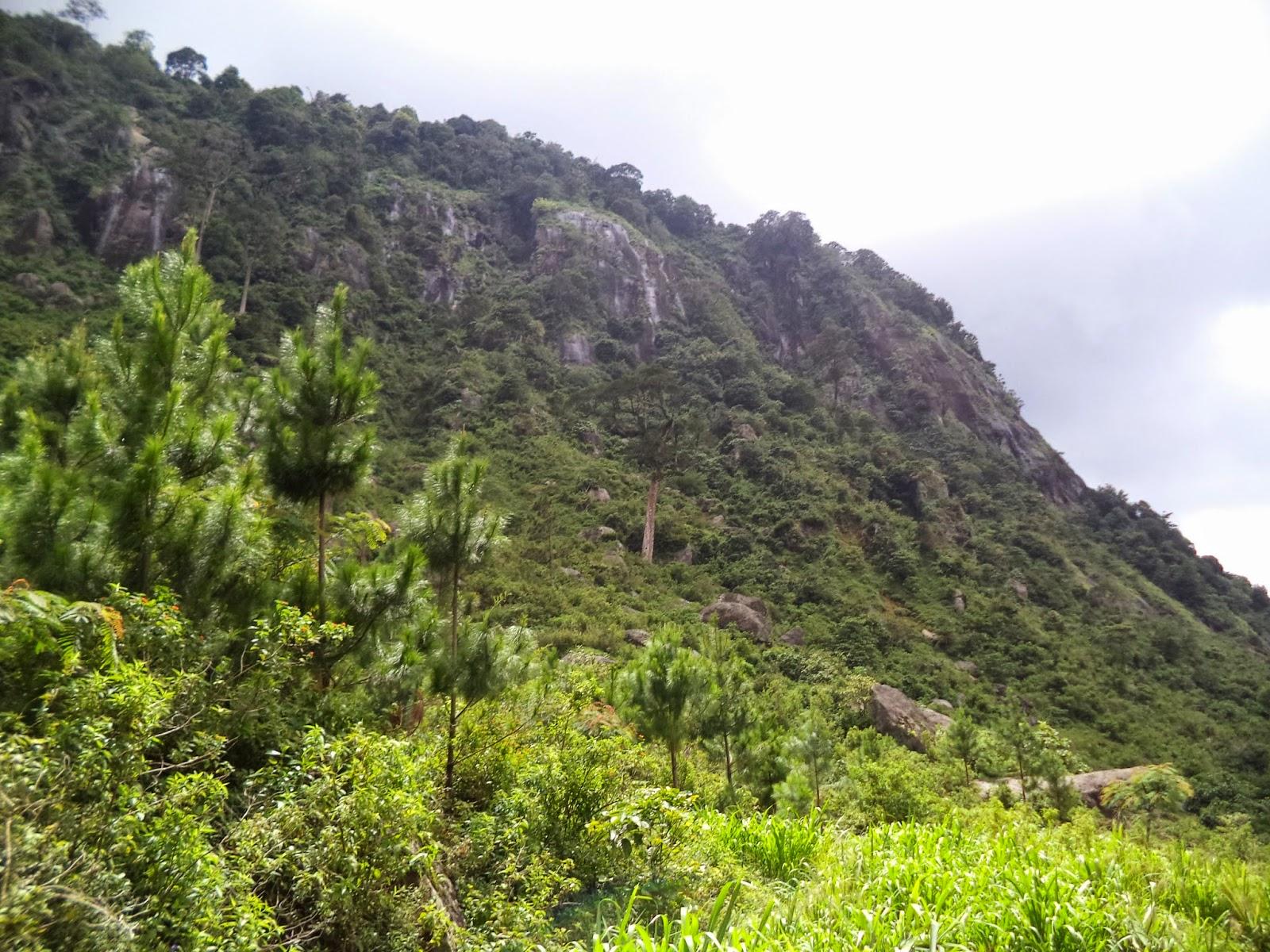 Download 8600 Background Pemandangan Desa HD Terbaik