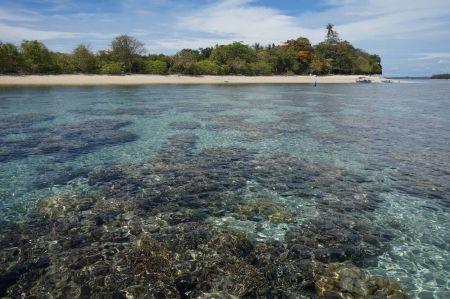 Pulau Kakara Maluku Utara