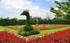 Taman Bunga Nusantara Wisata Indah di Jawa Barat