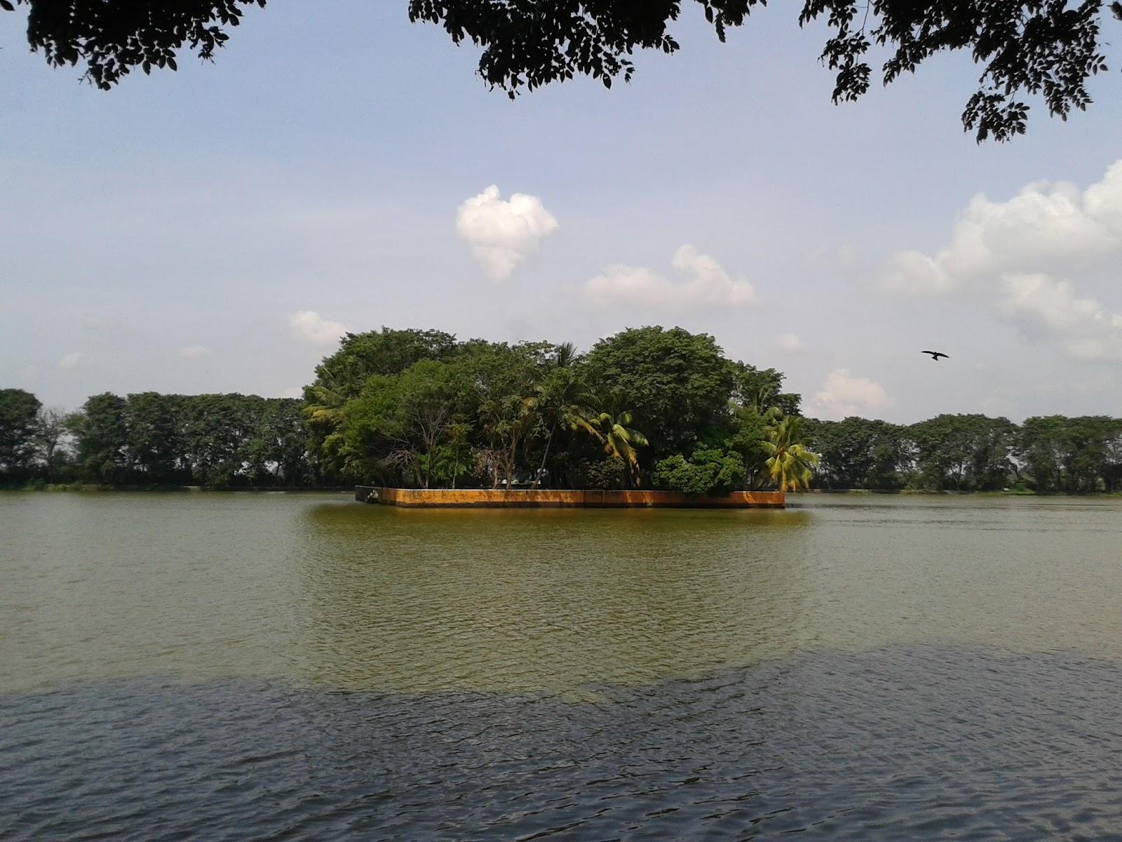 Hasil gambar untuk danau tasikardi banten