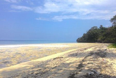 Pantai Koguna Sulawesi Tenggara