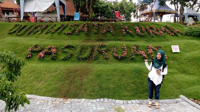 Kebun Kurma Pasuruan Satu Satunya Di Indonesia Jawa Timur