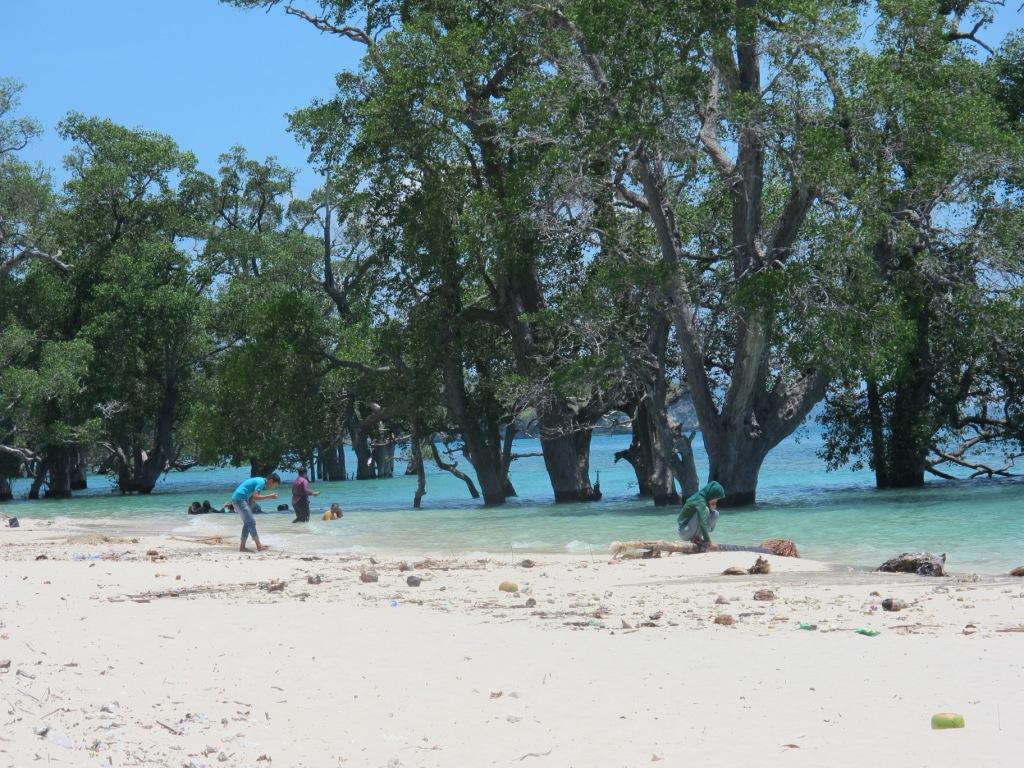 Pantai Lhok Mee Menikmati Indahnya Pasir Putih Di Aceh Aceh