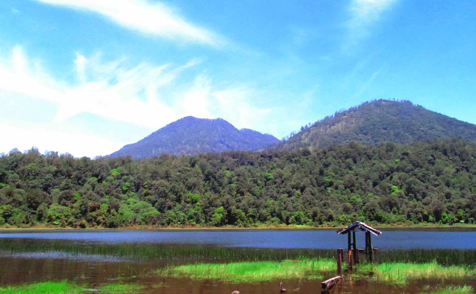 Danau Taman Hidup Wisata Indah Di Kaki Gunung Argopuro Jawa Timur Jawa Timur