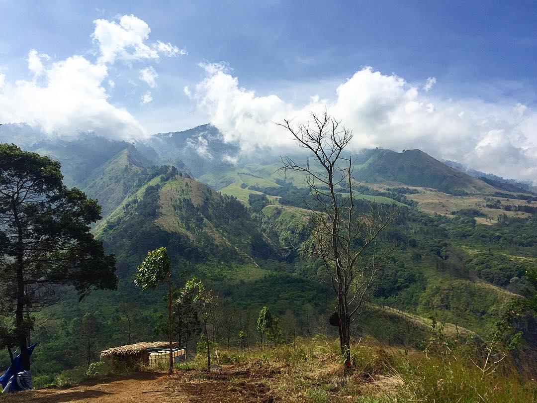 Bukit Budug Asu Temukan Pemandangan Berbeda Di Malang Jawa Timur