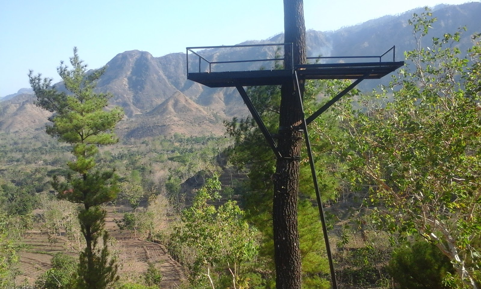 Gunung Beruk Pemandangan Alam Terbuka Di Ponorogo Jawa Timur