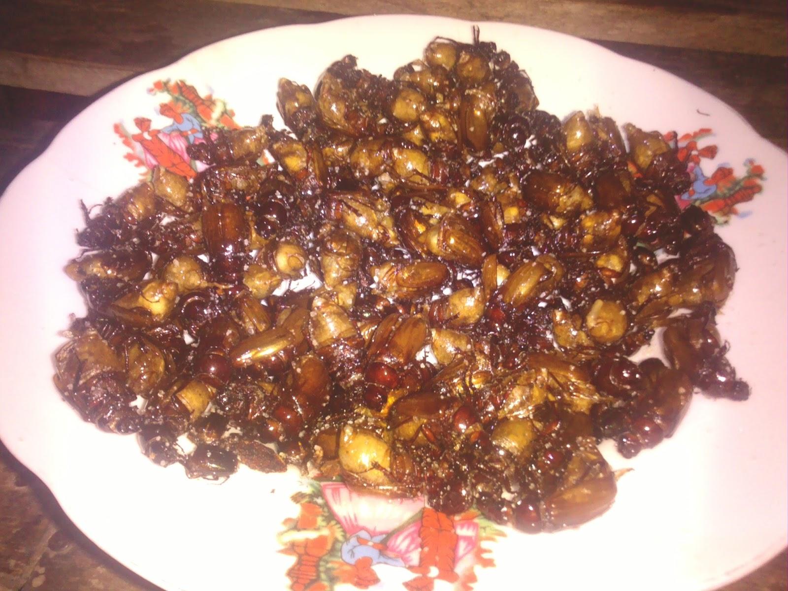 Puthul Goreng Gurihnya Kuliner Ekstrim Khas Gunung Kidul