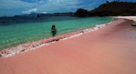 Pink Beach Nusa Tenggara Timur