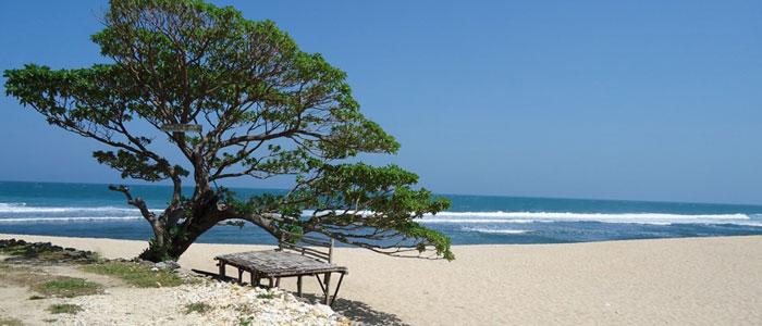 Pantai Pok Tunggal Wisata Pantai Yang Eksotis Di Gunungkidul Yogyakarta Yogyakarta