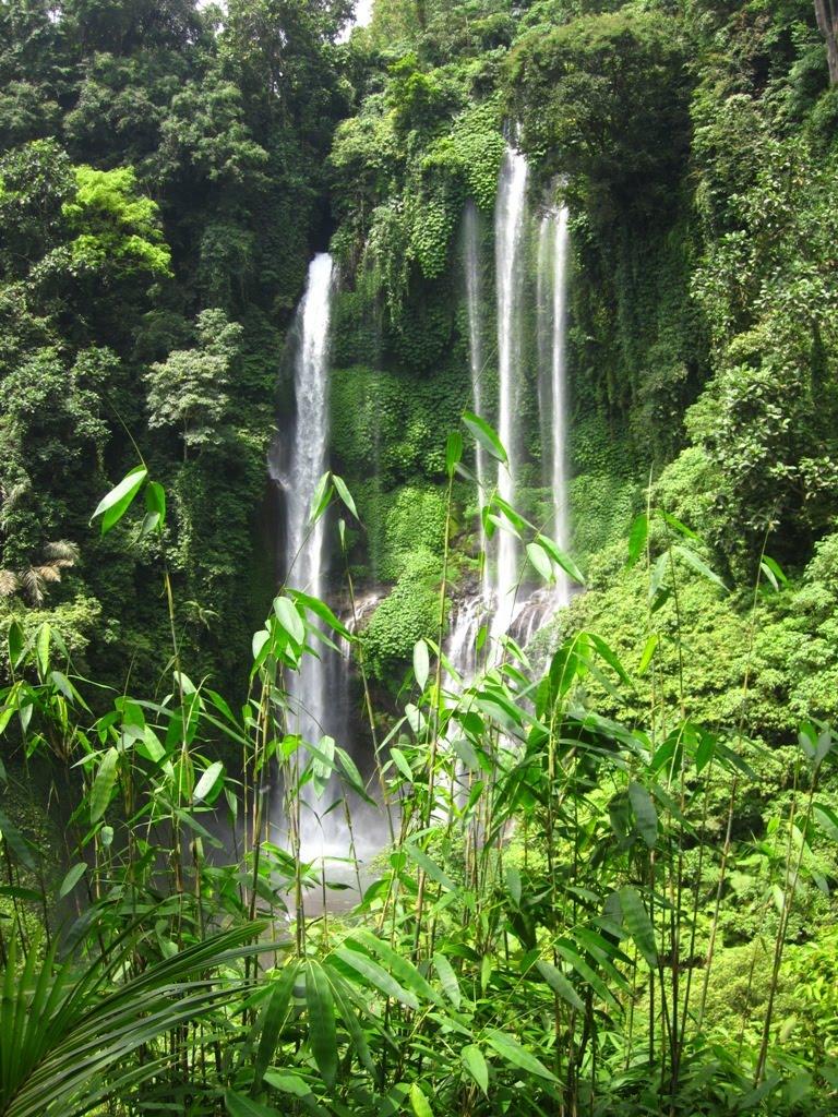 Air Terjun Sekumpul 7 Air Terjun yang Tersembunyi Bali