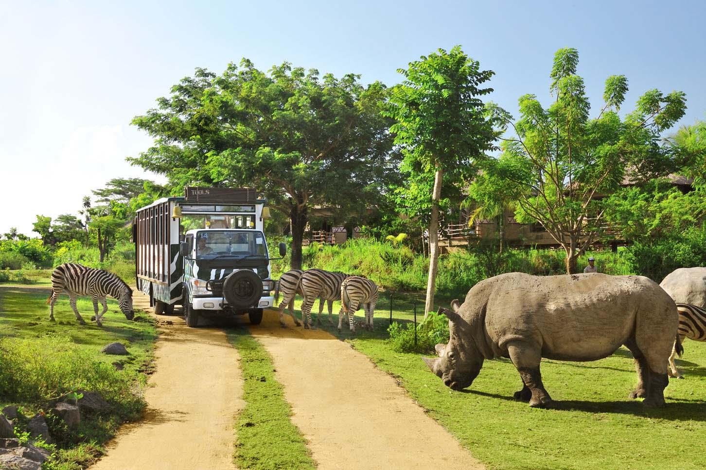Bali Safari And Marine Park Wisata Asik Dan Menyenangkan Bali