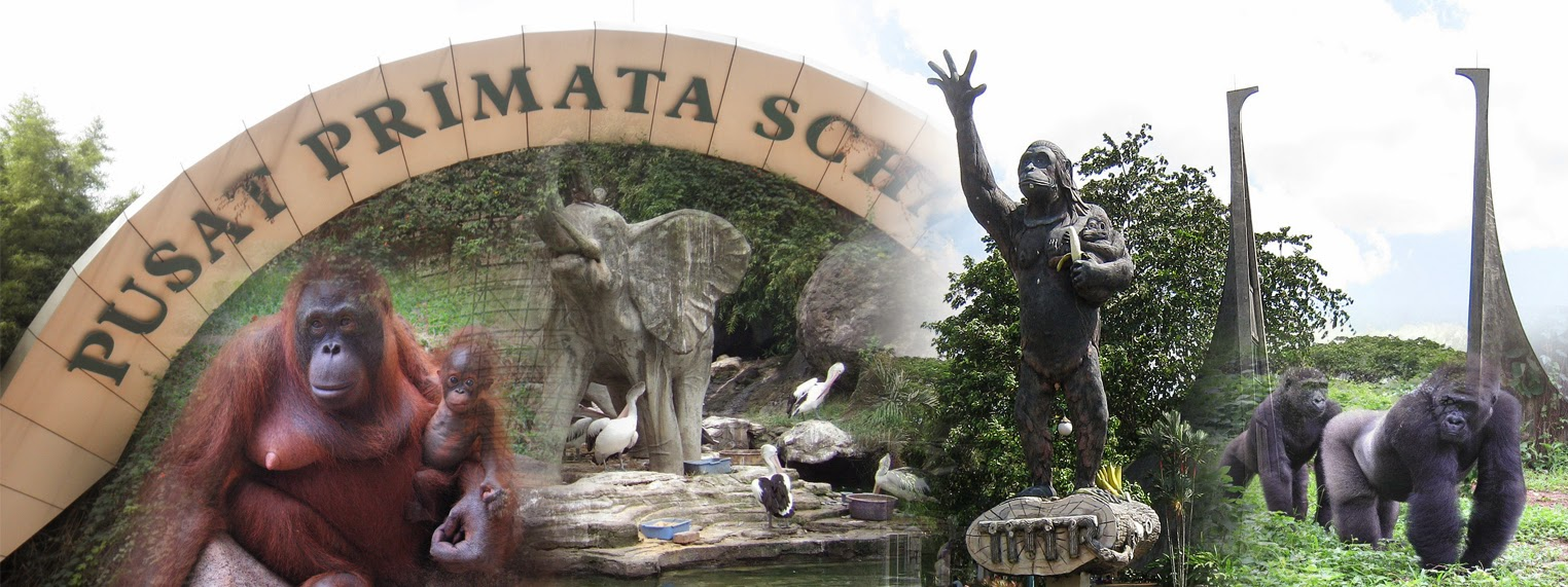 Kebun Binatang Ragunan Jakarta Wisata Belajar Bagi Anak-Anak - Jakarta