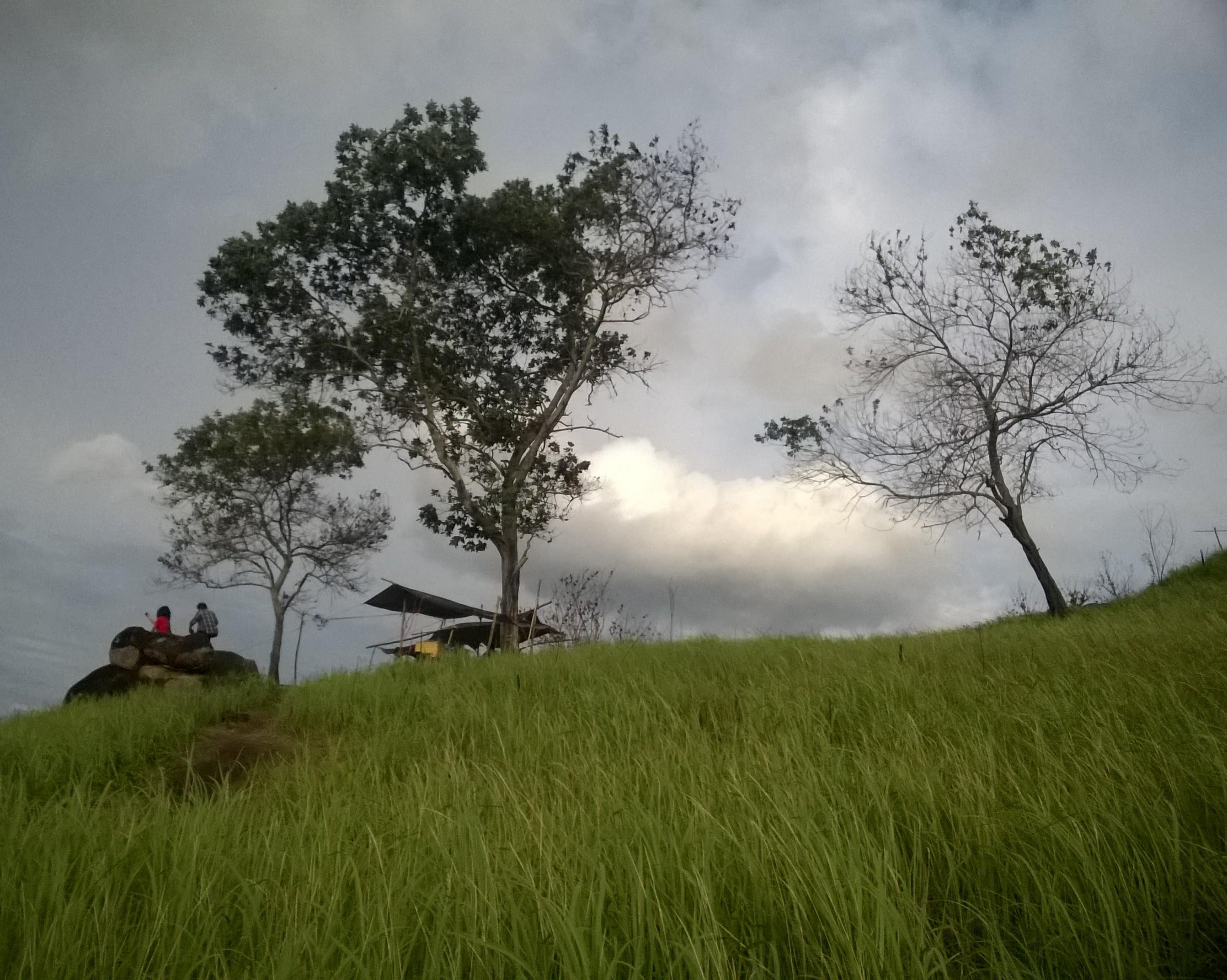 Bukit Tangkiling Kalimantan Tengah